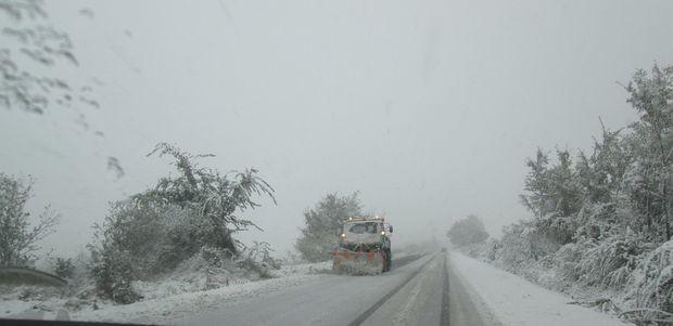 София: 14 коли потрошени от паднали дървета и клони