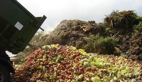 Очаква се внос на развалени гръцки плодове и зеленчуци