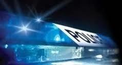 Ловеч: Две пушки и пистолет откри полицията в Лешница