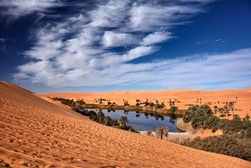 Пустинни миражи в жълтия код на лятото