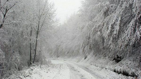 Три жертви на снежната стихия в България
