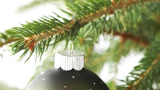 Плевен посреща Коледните празници с концерти и изложби