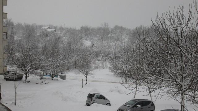 Над 60 машини чистят снега в община Плевен